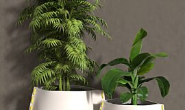 Stitch Plant Pot Collection Idea