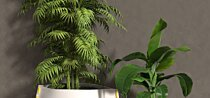 Stitch Plant Pot Collection